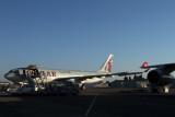 QATAR_CARGO_AIRBUS_A330F_BUD_RF_IMG_9211.jpg
