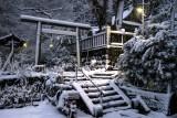 winter_snowfall