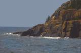 Acadia Nationa Park-Shore Line