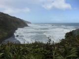 Muriwai Beach Gannets 2017-2018