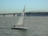 Yacht and Auckland Harbour Bridge
