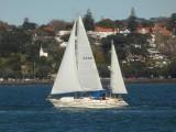 Yacht SULAU 2