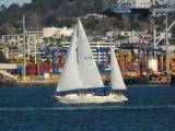 Yacht SULAU 1