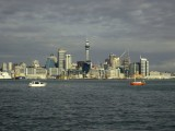 Auckland and Harbour 8