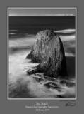 Sea Stack Yaquina Head BW.jpg