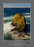 Sea Stack Yaquina Head Color.jpg