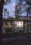 Lucca Duomo