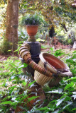 Bogor Botanical Gardens - Kebun Raya – Indonesia 2018