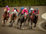 Emerald Downs:  Click image to open gallery