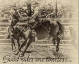 2017 Pritchard BCRA Rodeo