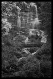 Amicalola Falls Close Up