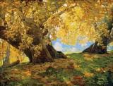 c. 1917 - Sycamore in Autumn, Orange County Park, California