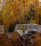 1910 - Terrace, Autumn
