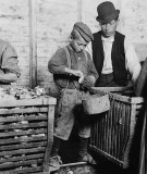 March 1911 - 9 year old Johnnie shucking oysters