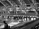 June 1916 - Grandstands at the Chicago Coliseum