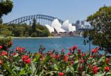 View from RBG - Sydney, Australia - February 2017