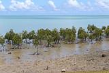Ile Rodrigues - Découverte de la côte nord et du centre de l'île