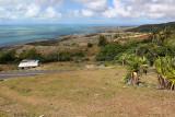 393 - Vacances ile Rodrigues janvier 2017 - IMG_2372_DxO Pbase.jpg