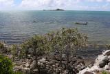 438 - Vacances ile Rodrigues janvier 2017 - IMG_2412_DxO Pbase.jpg