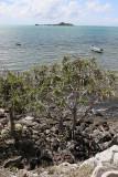 444 - Vacances ile Rodrigues janvier 2017 - IMG_2417_DxO Pbase.jpg