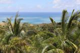 454 - Vacances ile Rodrigues janvier 2017 - IMG_2429_DxO Pbase.jpg