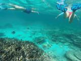461 - Snorkeling ile Rodrigues janvier 2017 - GOPR6296 DxO Pbase.jpg
