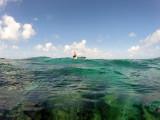 568 - Snorkeling ile Rodrigues janvier 2017 - GOPR6411 DxO Pbase.jpg