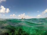 569 - Snorkeling ile Rodrigues janvier 2017 - GOPR6412 DxO Pbase.jpg