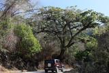 Voyage à Cuba en avril 2017 - Montée à la Gran Piedra en véhicules 4x4