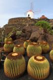Découverte de l'archipel des îles Canaries (Lanzarote, Fuerteventura, Tenerife et La Gomera)