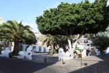 697 Vacances aux iles Canaries nov 2017 - IMG_0739 DxO Pbase.jpg