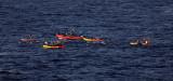 1083 Vacances aux iles Canaries nov 2017 - IMG_1151 DxO Pbase.jpg