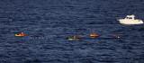 1086 Vacances aux iles Canaries nov 2017 - IMG_1154 DxO Pbase.jpg