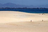 1233 Vacances aux iles Canaries nov 2017 - IMG_1320 DxO Pbase.jpg