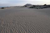 1640 Vacances aux iles Canaries nov 2017 - IMG_1797 DxO Pbase.jpg