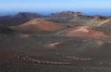 Lanzarote : découverte du parc national de Timanfaya et de la vallée de La Geria