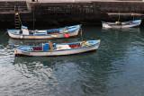 2743 Vacances aux iles Canaries nov 2017 - IMG_2958 DxO Pbase.jpg