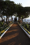 2834 Vacances aux iles Canaries nov 2017 - IMG_3081 DxO Pbase.jpg