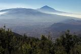 Tenerife : excursion dans le nord de l'île et le parc rural de l'Anaga