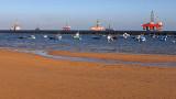 3275 Vacances aux iles Canaries nov 2017 - IMG_3566 DxO Pbase.jpg