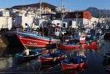 3367 Vacances aux iles Canaries nov 2017 - IMG_3662 DxO Pbase.jpg