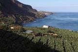 3915 Vacances aux iles Canaries nov 2017 - IMG_4274 DxO Pbase.jpg