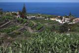 3957 Vacances aux iles Canaries nov 2017 - IMG_4324 DxO Pbase.jpg