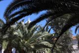 4045 Vacances aux iles Canaries nov 2017 - IMG_4425 DxO Pbase.jpg