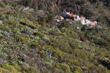 4150 Vacances aux iles Canaries nov 2017 - IMG_4551 DxO Pbase.jpg