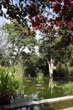 5044 Vacances aux iles Canaries nov 2017 - IMG_5616 DxO Pbase.jpg