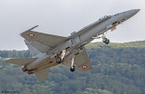Swiss F/A-18 Hornet Solo Display