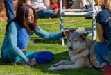 018_sedona-wolf-week-plan-b.jpg