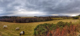 Over the Moray Firth (Pano)