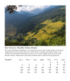 Rice Terraces, Punakha Valley, Bhutan